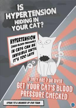 cat hypertension poster design